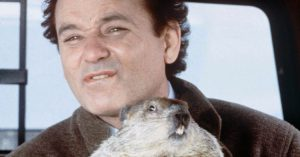 groundhog day colorado tax policy