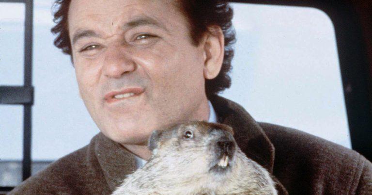 groundhog day colorado tax policy